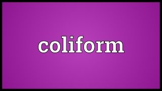 coliform meaning