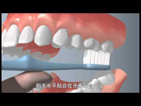 保護牙齒五部曲
