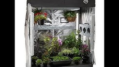 What is The Eco Garden House? Growing Indoors 24-7-365 The Wisconsin Vegetable Gardener