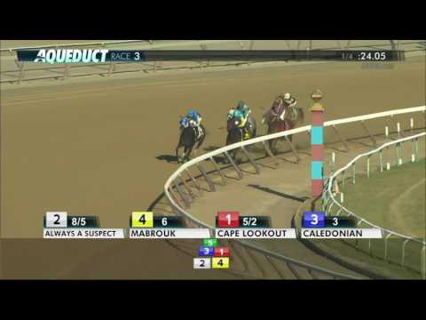 Caledonian - 2017 Lost in the Fog Stakes