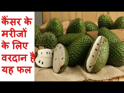 कैंसर के मरीजों के लिए वरदान है यह फल Benefits of Graviola fruit
