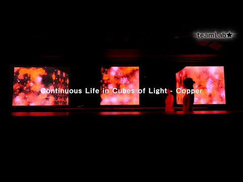 Continuous Life in Cubes of Light   Copper