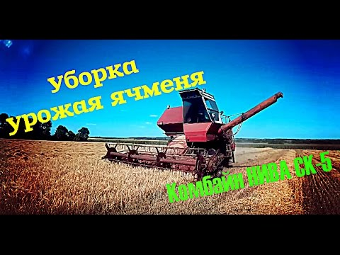 Цены на пшеницу, кукурузу - ААА