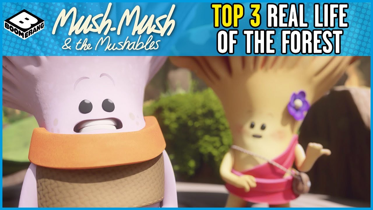 Mush-Mush and the Mushables | Top 3 The Real Life of the Forest | Boomerang UK 🇬🇧