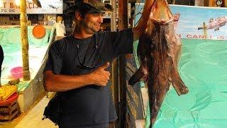 turcja 2009 podrże z wędką zwiastun filmu travelling with a fishing rod