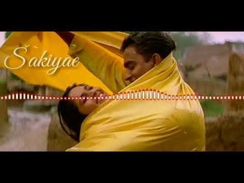 Pachai Nirame song with lyrics | Alaipayuthey