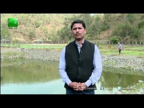 Integrated Farming System with Pond based farming system On Green TV
