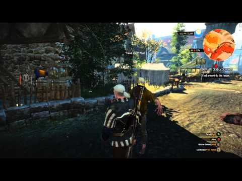 The Witcher 3 character model and animation glitch