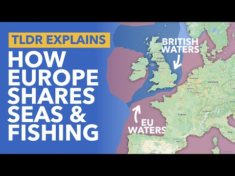 The Common Fisheries Policy & Brexit: Why is the European Union So Obsessed with Fish? - TLDR News