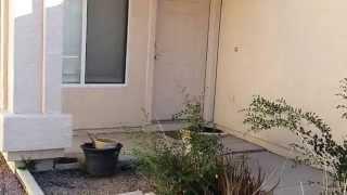 США. Дом для аренды в Аризоне. Самая дешевая цена.