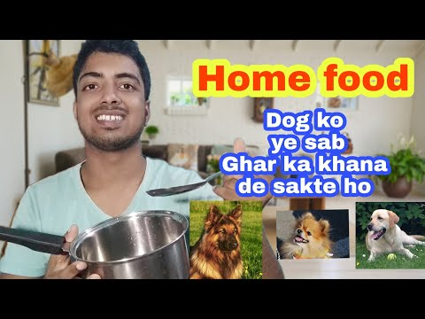 Best Home made food for your Dog 😋🐕