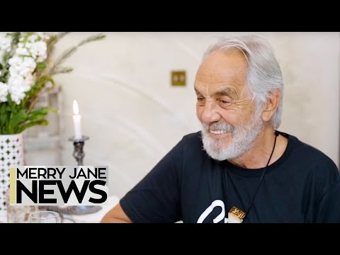 To Work for Tommy Chong, You Need to Take a Drug Test | MERRY JANE News