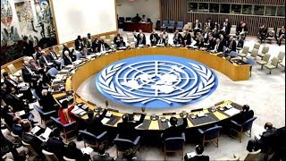 Breaking News!  Ambazonia: Cameroon Denounces Misinformation at the UN! Watch
