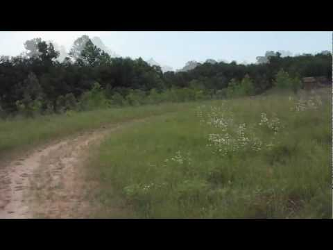 Adventure #11: Indian Camp Creek