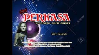 Download Mp3 Tulang Rusuk - Sely Rosandi   Perkasa 2020