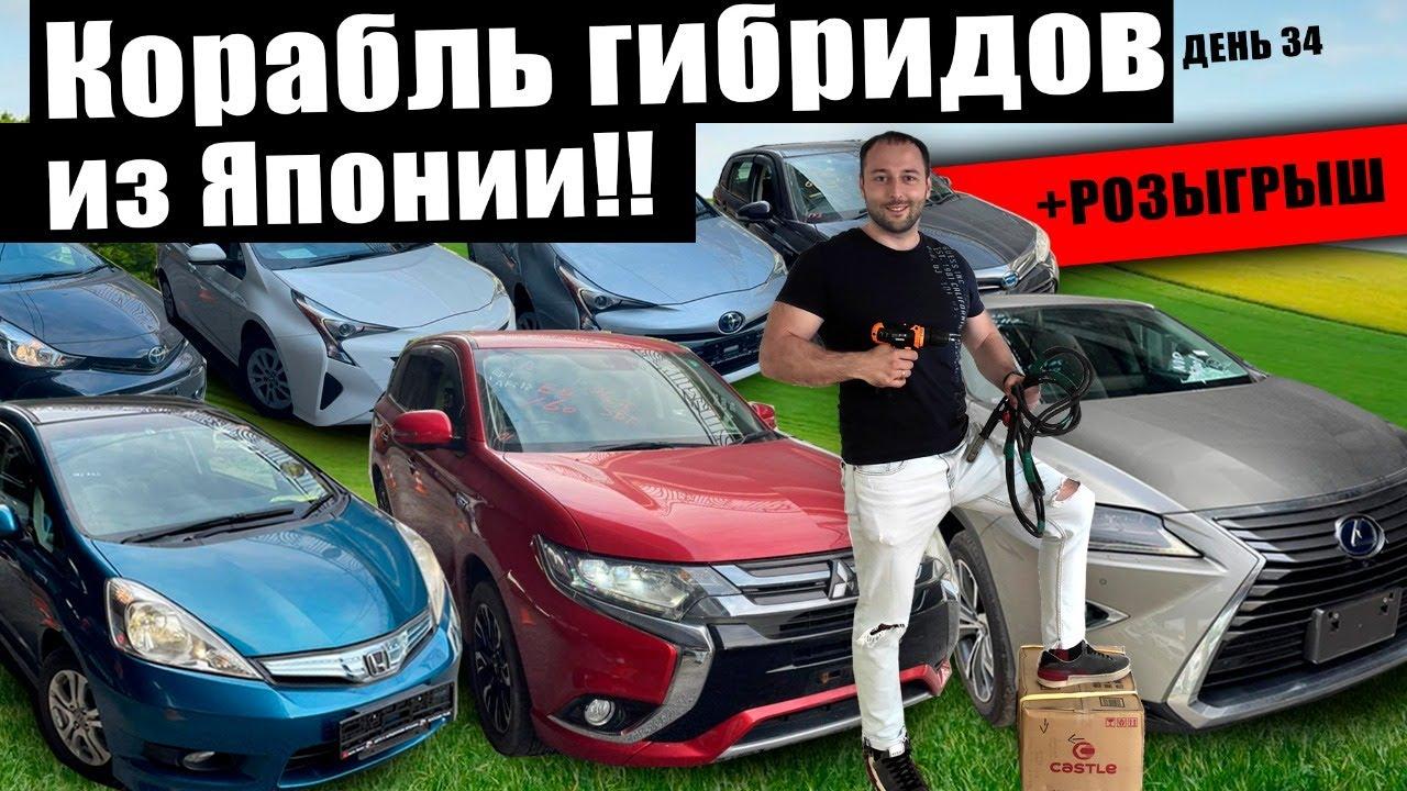 Большое поступление Гибридов из Японии - Свежий привоз - АвтоЗаказ!