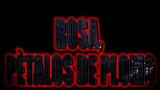 ROSA PETALOS DE PLOMO TRAILER