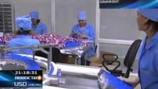 Казахстанские фармацевты обсудили проблемы