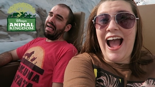 A Wild Morning at Animal Kingdom | Walt Disney World Vacation September 2016, Day 3 Part 1