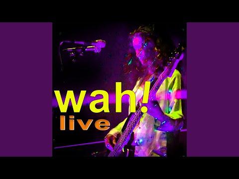 New York City Lalitamba (Live)