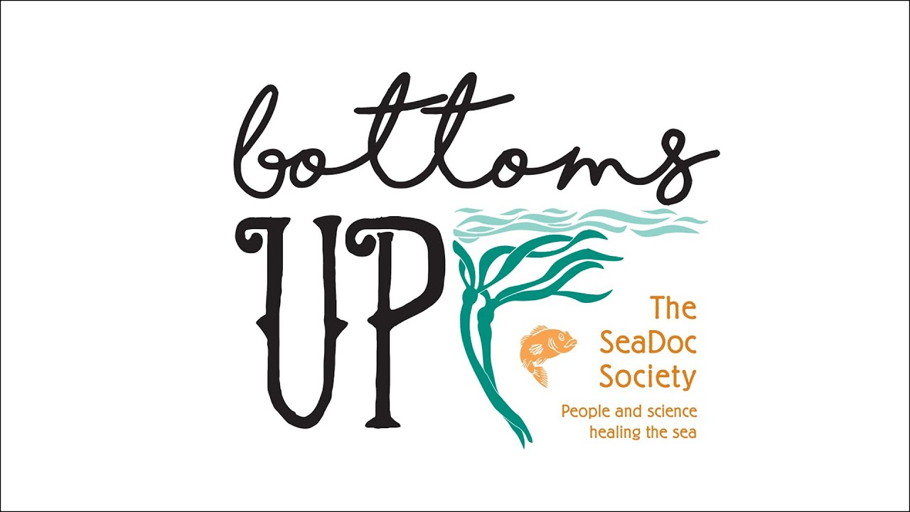 SeaDoc Society to Hold Annual Fundraiser, Working for Health of the Salish Sea