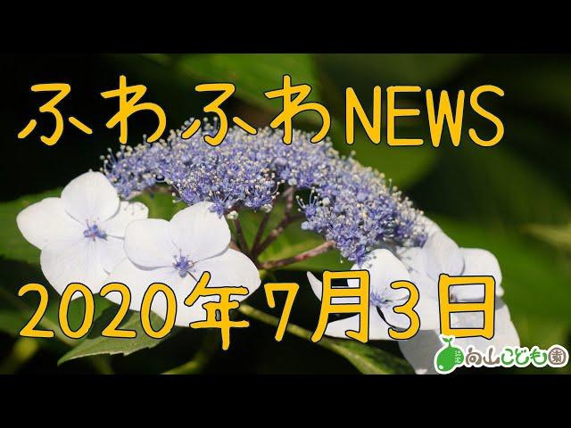 20200702  ふわふわNEWS 室内環境紹介