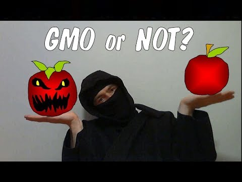 How to Tell If Your Food is GMO or Not?