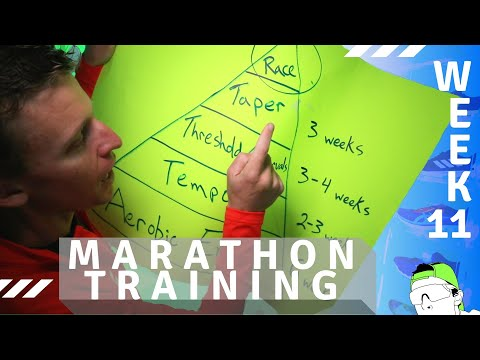 marathon-training-week-11:-track-+-time-trial