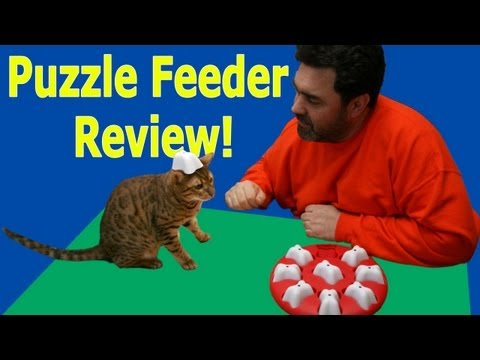 Cat Puzzle Feeder Review - Dog Magic by Nina Ottosson