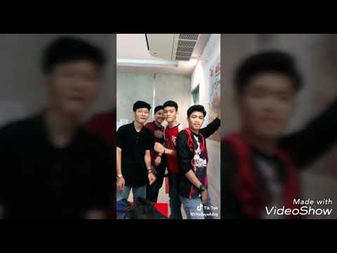 Anjing Kacili Kompilasi Tik Tok Video Viral 2018