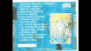 FOREVER ROCK VOL 7 CD COMPLETO