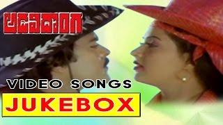Adavi Donga Telugu Movie Video Songs Jukebox || Chiranjeevi,  Radha