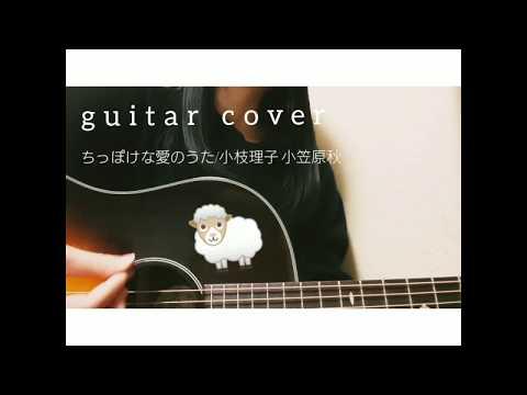 【高校生 ギター弾き語り】ちっぽけな愛のうた/小枝理子&小笠原秋