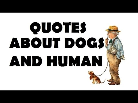 Beautiful Quotes - About Dogs and Human