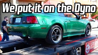 Turning Heads On the Dyno