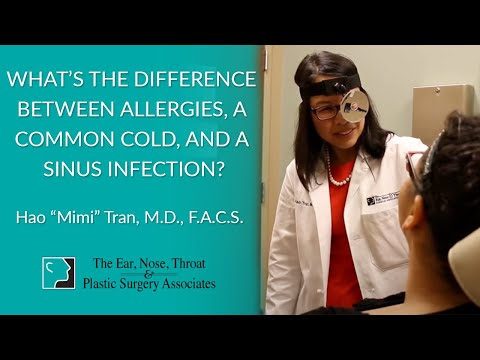 What's the Difference Between Allergies, a Common Cold, and a Sinus Infection?
