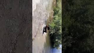 Summer fun at Mctucker ponds