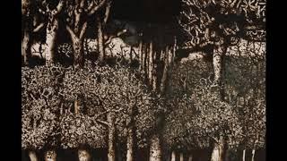Dark Forest 4-10-17