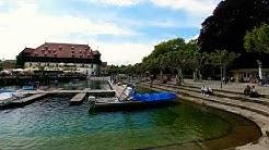 Gruß aus Konstanz am Bodensee! Schöne Pfingsten 🌹🐝🌻