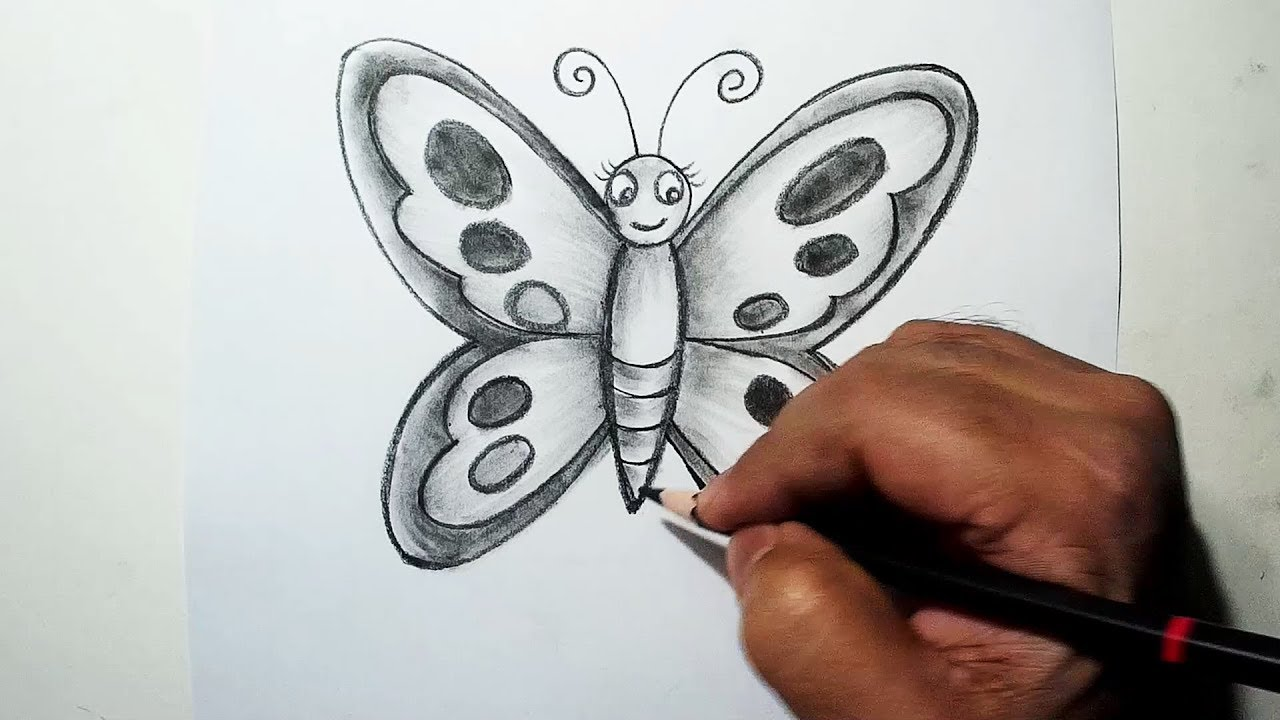 How to draw a butterfly easy sketch draw shade