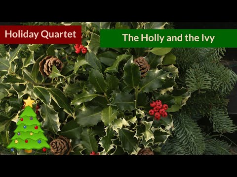 The Holly and the Ivy - Christmas Native American Flute Quartet
