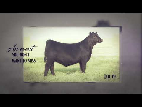 Gohr Cattle Company Crown Jewel Event