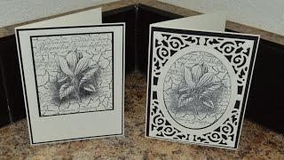 Magnolia Grandiflora Cards