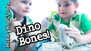Dig Up Dinosaur Bones JURASSIC WORLD! HobbyBobby by HobbyKidsVids