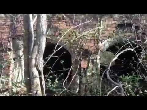 Abandoned Beehive Coke Ovens Poland mines Greene county PA