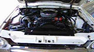 1965 Ford Thunderbird 390 Engine Cold Start