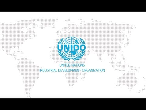 The United Nations Industrial Development Organization (RU)