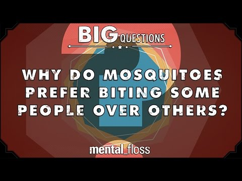 Why do mosquitoes prefer biting some people to others? - Big Questions - (Ep. 26)