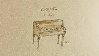 Birdy - Chopin Waltz in A Minor (Interlude) [Official Visualiser]