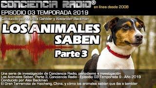 🐶 'LOS ANIMALES SABEN' 🐱 Parte 3 🐴 El Terremoto de Haicheng 🌏 CR Temp 9, Ep 3 2019 Alex Backman